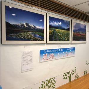 尾瀬の写真展「尾瀬、いこおぜ!」開催中です!