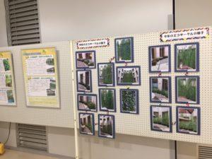 緑のカーテンパネル展示