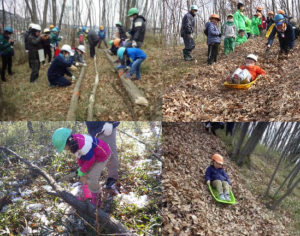 【中止のお知らせ】冬の里山を楽しもう ~間伐体験と落ち葉ですべり台~