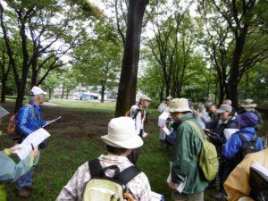 「かんきょう観察秋の野草一斉調査会」は予定通り、開催しました。2018/09/30更新
