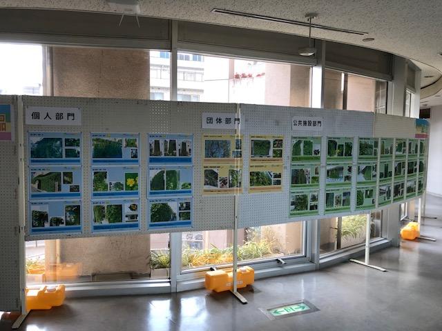 緑のカーテンコンテスト作品展示