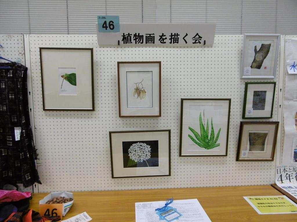 第18回環境なんでも見本市(2月2日・3日)出展団体の紹介( ●ブースNo.12植物画を描く会)