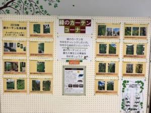 緑のカーテン展示