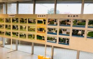 緑のカーテンコンテスト応募作品展示