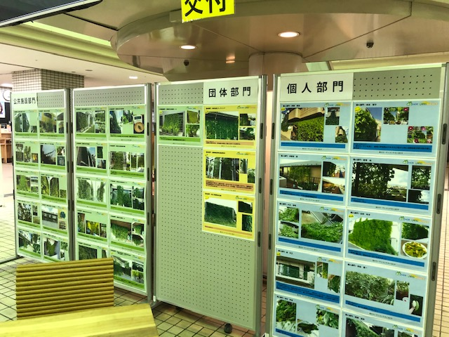 緑のカーテンコンテスト表彰式テレビ放映のお知らせ