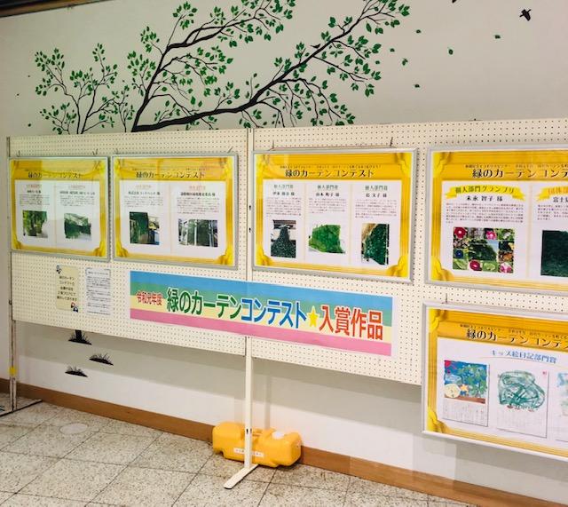 緑のカーテンコンテスト 作品展示開催中
