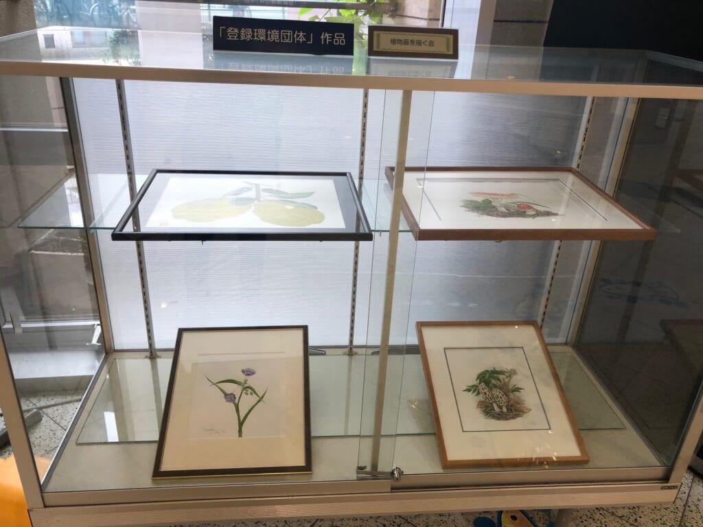 録環境団体「植物画を描く会」