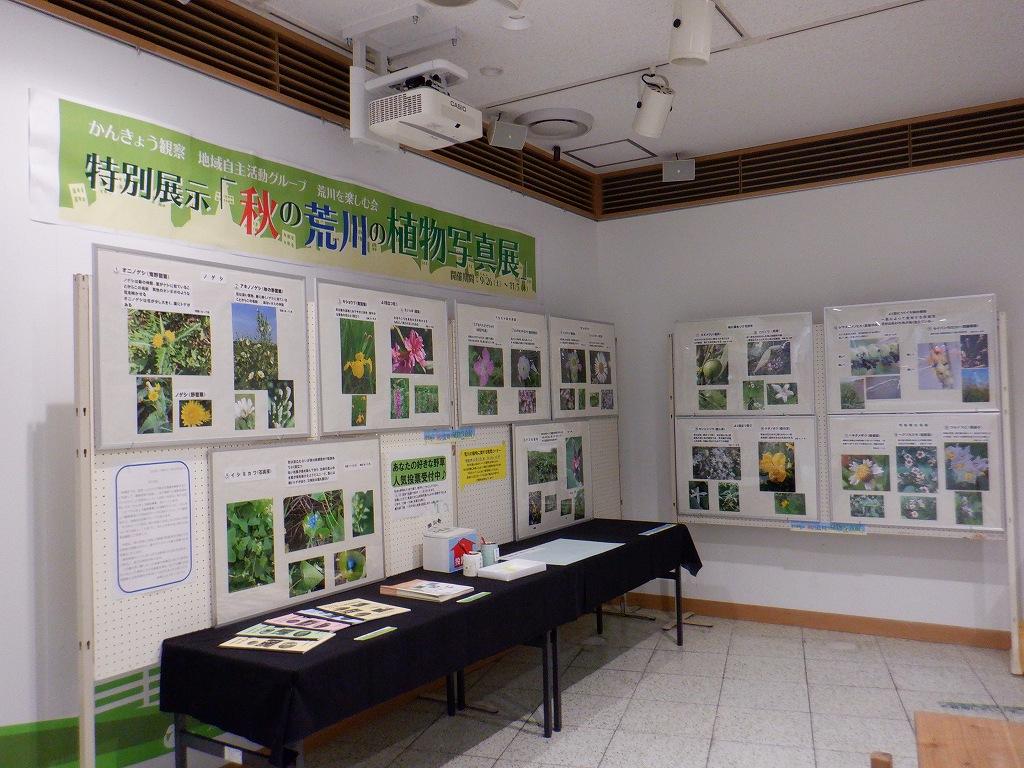 特別展示「秋の荒川の植物写真展」開催中