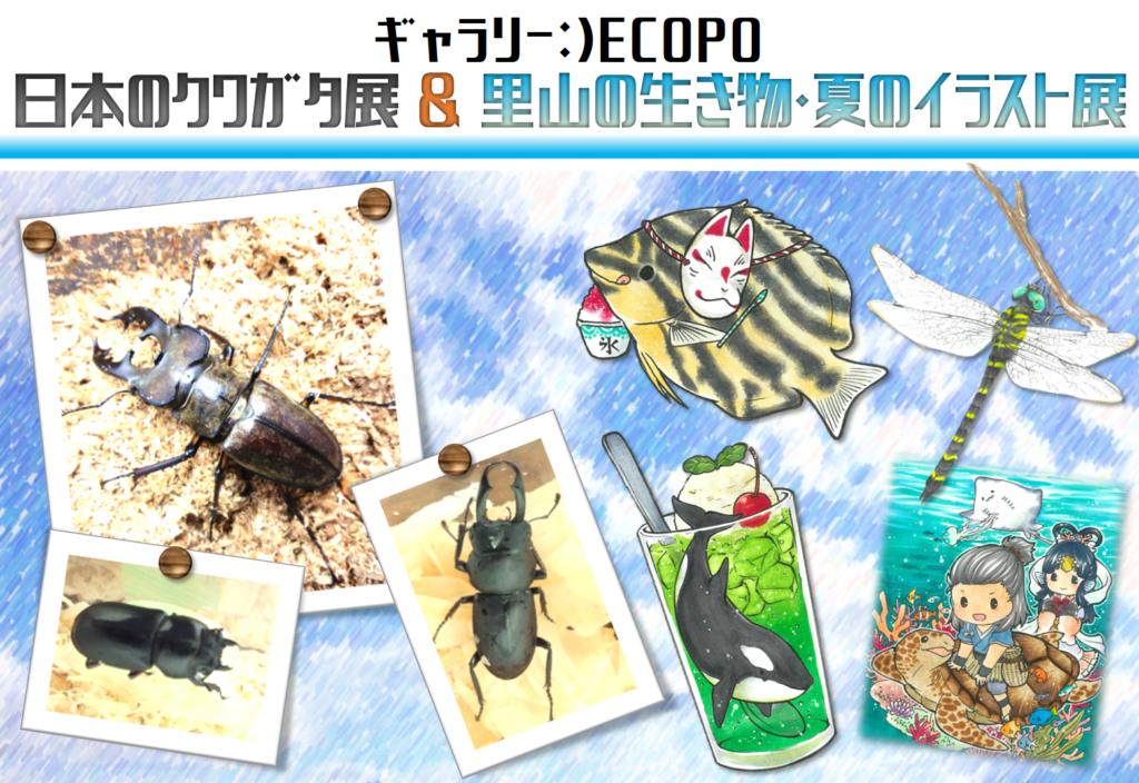 【ギャラリー:)ECOPO】 日本のクワガタ展&里山の生き物・夏のイラスト展