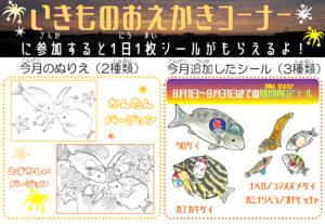 いきものおえかきコーナー2021年8月